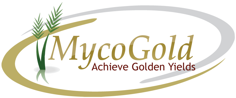 MycoGold – Mycorrhizal fungi mycorrhizae for row crops, soybeans, corn, peanuts, cotton, wheat